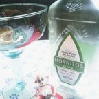 A review of refreshing Hornitos Tequila + recipes