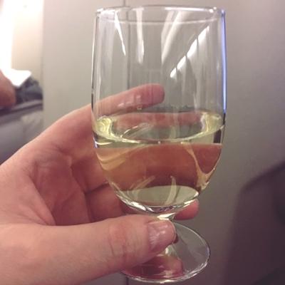 tap flight 2.JPG