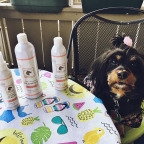 Luxury for your pet: Prince Lorenzo's Royal Treatment